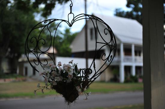 Delta Street Inn: Garden