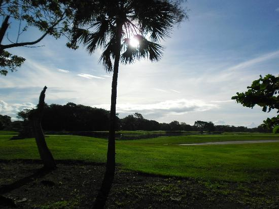 Hotel Riu Lupita: golf course at hotel