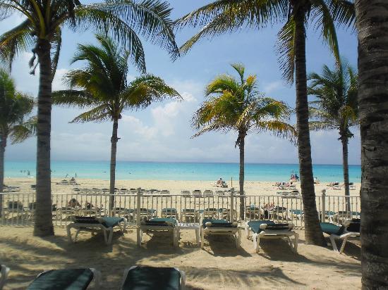 Hotel Riu Lupita: paradise