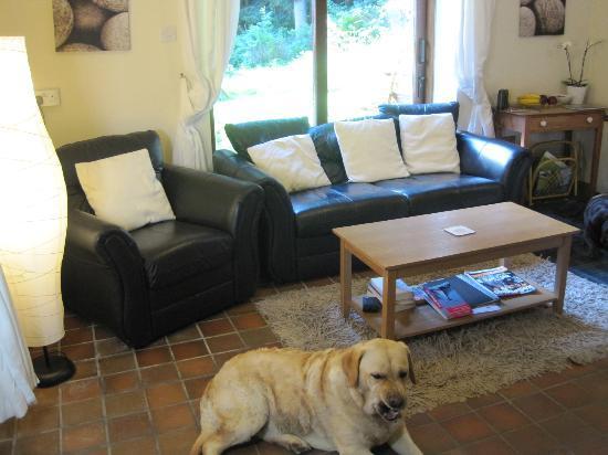 Trallwm Forest Cottages: Siskin lounge