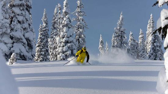 Eagle Pass Heliskiing: getlstd_property_photo