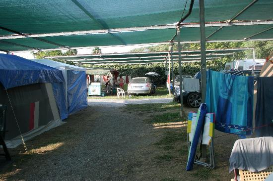 Camping Delfino: vialetto tra le piazzole