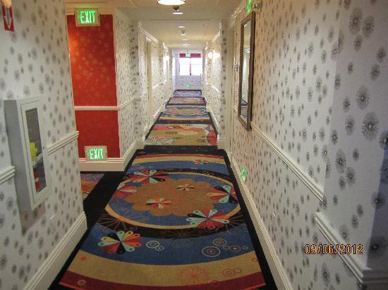 Hotel Shattuck Plaza: Branch hallway to my room