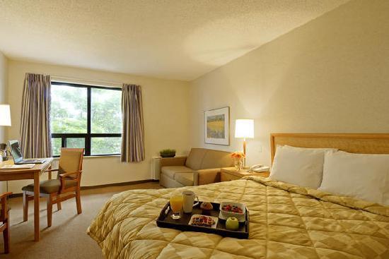 Econo Lodge Airport: Comfort Care Queen 2nd floor