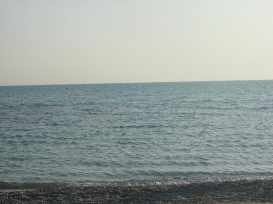 Hotel Residence Stella del Mare: Mare
