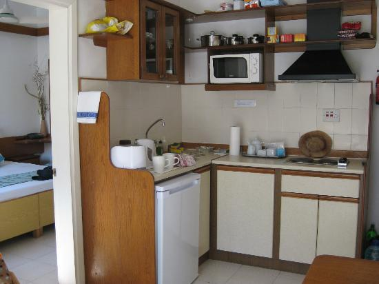 Park Lane Aparthotel: Wohnküche - Küchenzeile