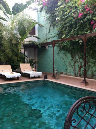 Riad Chergui: Pool