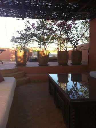 Riad Chergui: Relaxbereich Dachterrasse schattig