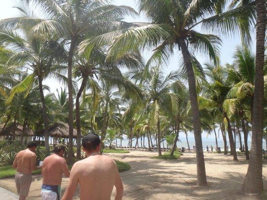 ClubHotel RIU Jalisco: beach
