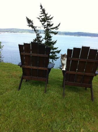 The Bluff on Whidbey: View from the edge of the bluff (and Rocky)