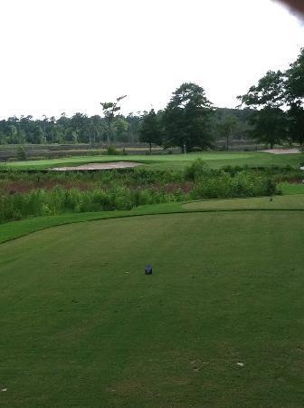 Carolina National Golf Club: Ibis, Heron, and Egret sets of nine Holes