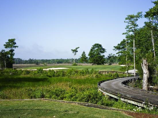 Carolina National Golf Club: 4.5 star rating by Golf Digest