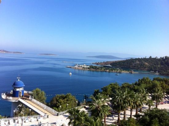 Blue Dreams Resort: from 6th floor