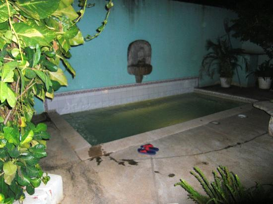 "Hotel Casa Real: ""Swimming-Pool"""