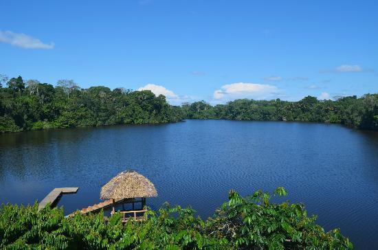 La Selva Amazon Ecolodge : Le lac depuis le restaurant