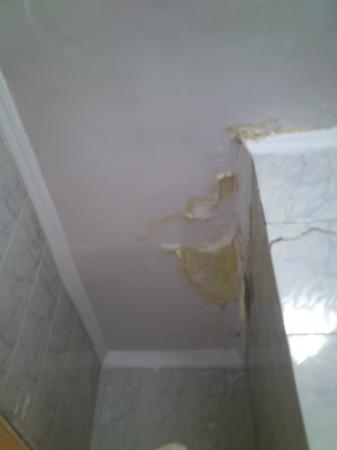 فندق نيو جاردن بالاس: Damp ceiling 