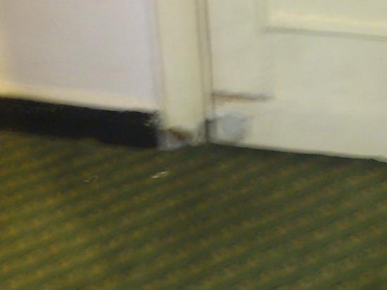 فندق نيو جاردن بالاس: more ROT 