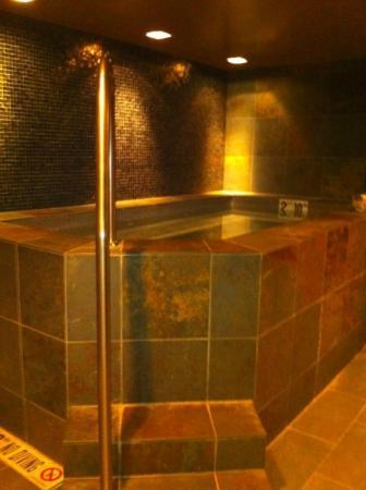 Teton Mountain Lodge & Spa - A Noble House Resort: Men's spa whirlpool