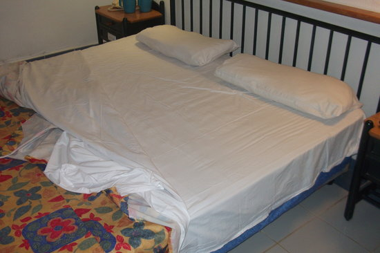 Brisas del Caribe Hotel:                   Room 530 South Side King Bed