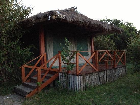 Kichakani Mara Camp: Tenda
