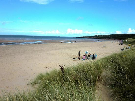 Tyddyn Isaf Camping and Caravan Park : LLigwy Beach - direct, secure footpath from the Campsite.