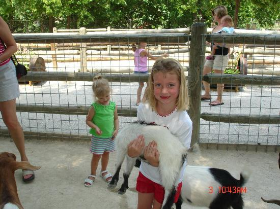 Deanna Rose Children's Farmstead : Emily and the Goats