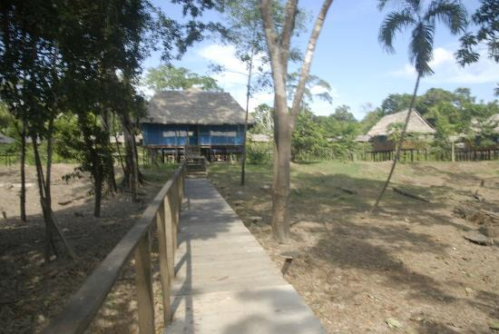 Curassow Amazon Lodge: Well built place