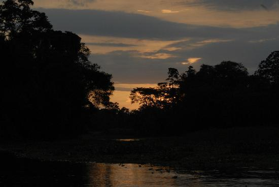Curassow Amazon Lodge: Sunset