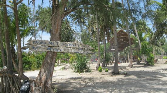 Motopwani Beach House & Restaurant: MOTOPWANI Michamvi Kae Zanzibar