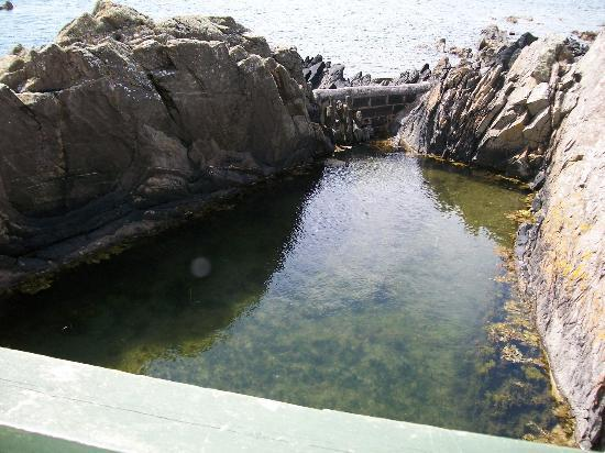 Port logan fish pond picture of logan fish pond marine for Saltwater fish pond
