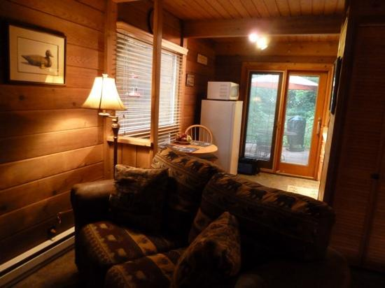 The Canyon Wren - Cabins for Two: Sycamore living room and kitchen- just perfect!