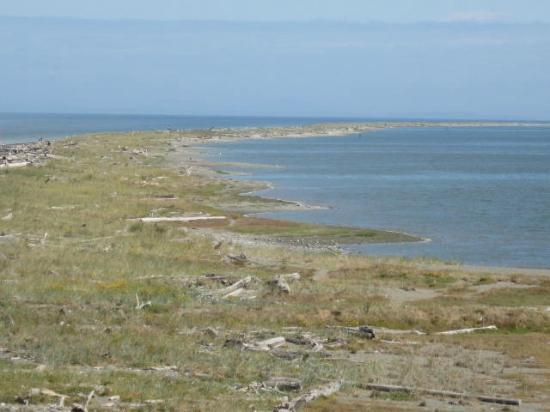 Dungeness National Wildlife Refuge: The spit