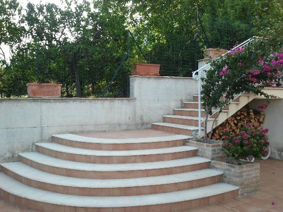 Villa Capri Bed and Breakfast: Stairs to the terrace