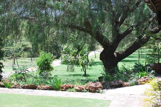 Great Rift Valley Lodge & Golf Resort: wonderful grounds