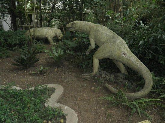 Museo Miguel Lillo De Ciencias Naturales