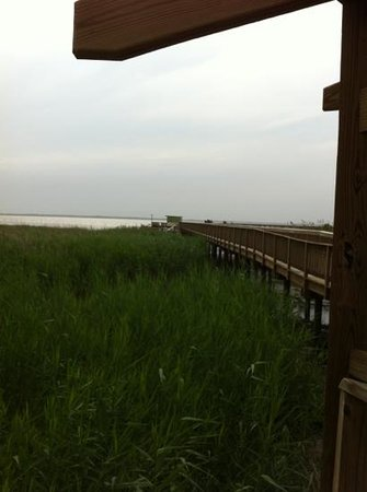 Duck, NC: boardwalk