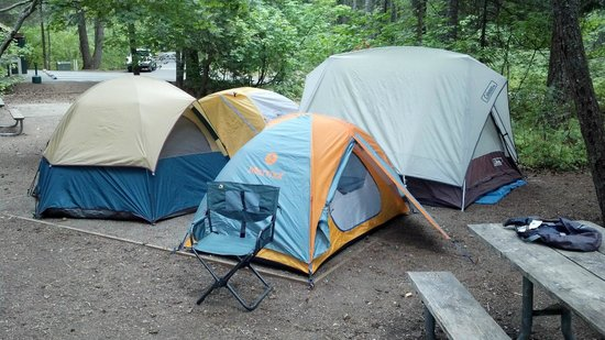 Lake Easton State Park Four small tents on the official tent pad area & Four small tents on the official tent pad area - Picture of Lake ...
