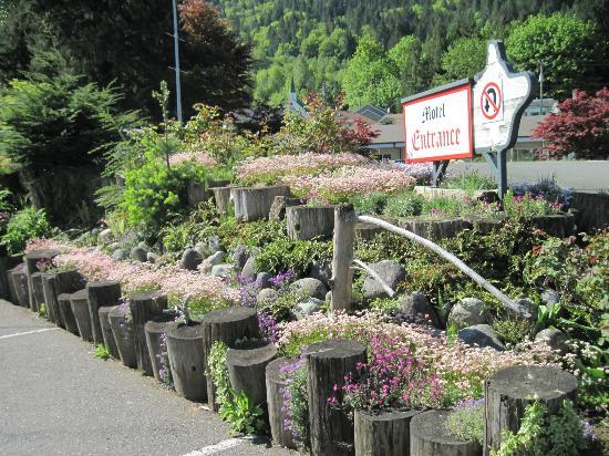 Alpine Motel張圖片