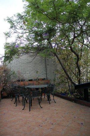 El Cenote Azul Hostel: Terraza
