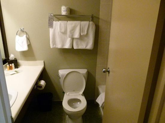Crystal Lodge Hotel: bathroom