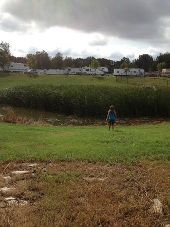 Yogi Bear's Jellystone Park Memphis: duck pond