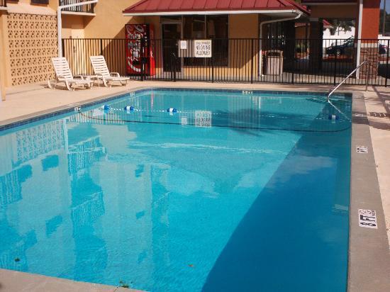 Charleston Grand Hotel: Pool