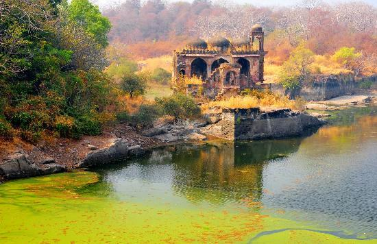 Ranthambore Fort: Ruined temple inside fort