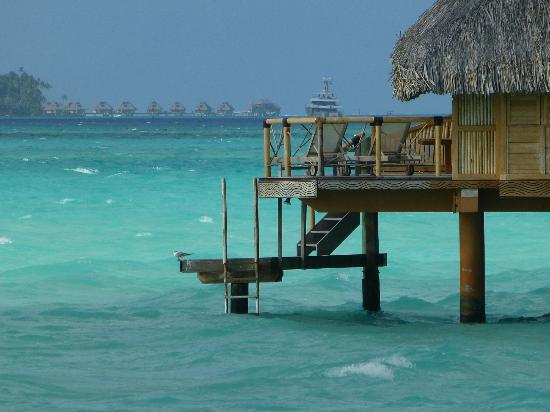 Bora Bora Pearl Beach Resort & Spa : You can go in the water right off of your room :)