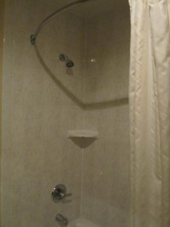 Best Western Markland Hotel: shower