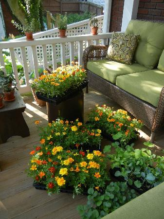 Mayor Lord's House Bed & Breakfast : Three Porches offer Guest Seating