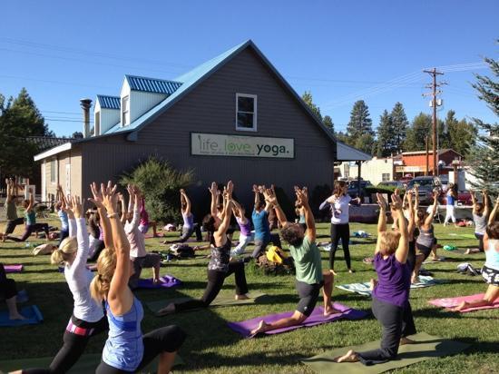 Life.Love.Yoga. : yoga aid at lly