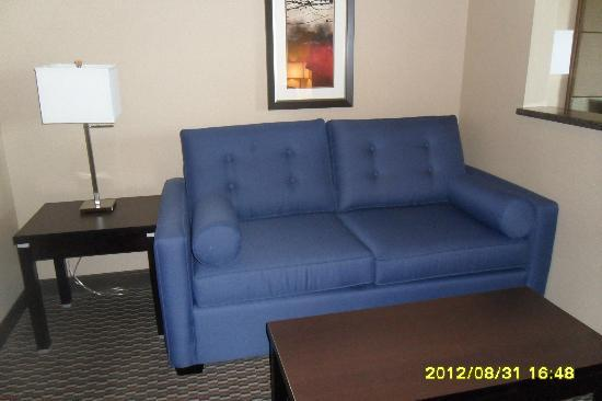 Comfort Suites Kelowna: Nice Comfy Sofa / Bed pullout