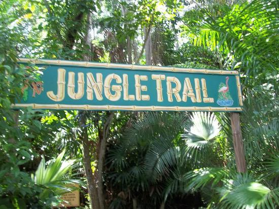 Sarasota Jungle Gardens: .