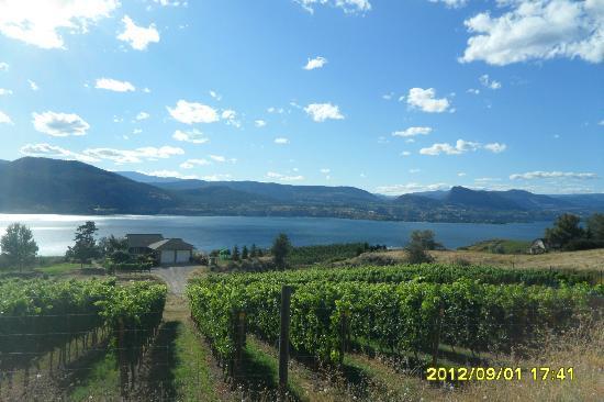 Elephant Island Orchard Wines: Beautiful Drive along the Way...